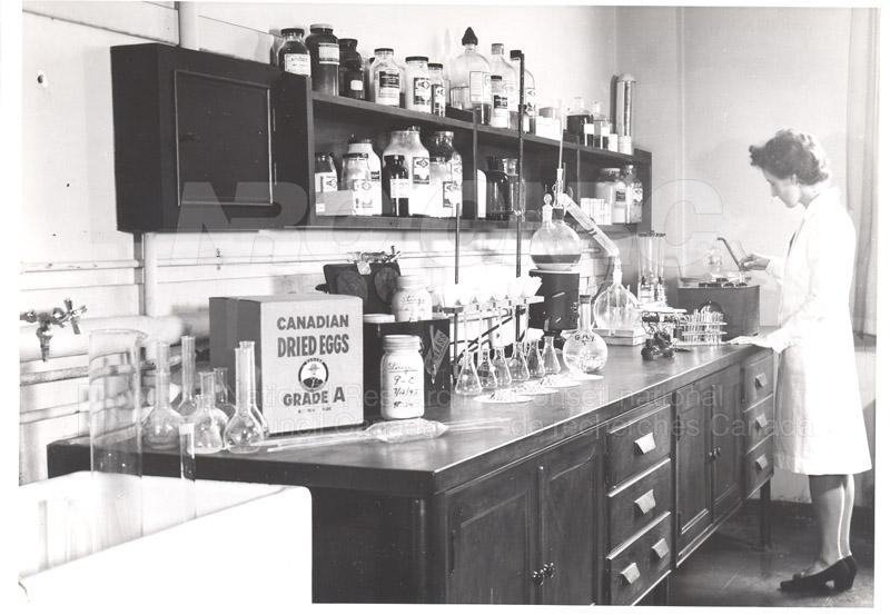 Testing Quality of Dried Eggs c.1943
