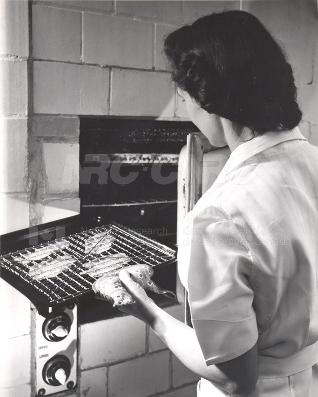 Food Chemistry- Meat Storage c.1948 002