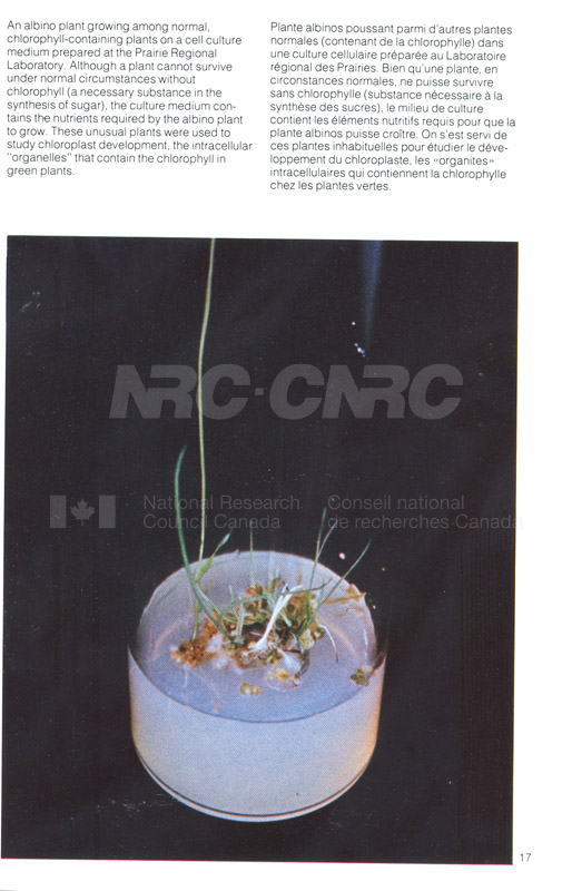 Brochure Biological Sciences 82-03-009