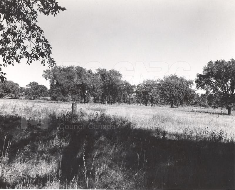 Site of Radio & E.E. Building (M-50) Before Construction- Mtl. Rd. Campus 007