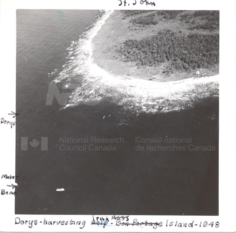 Wood Harbour c.1948 001