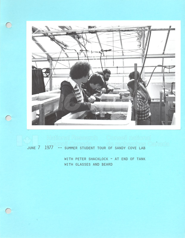 Summer Students 1977 004
