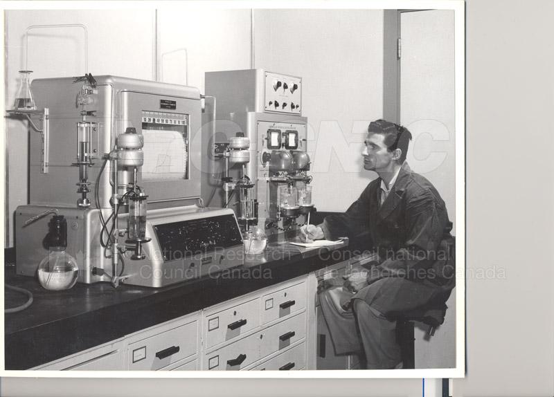 Oils June 1955
