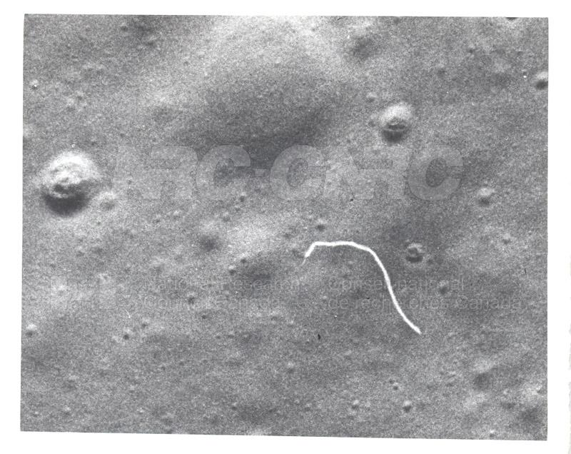 Moon 005