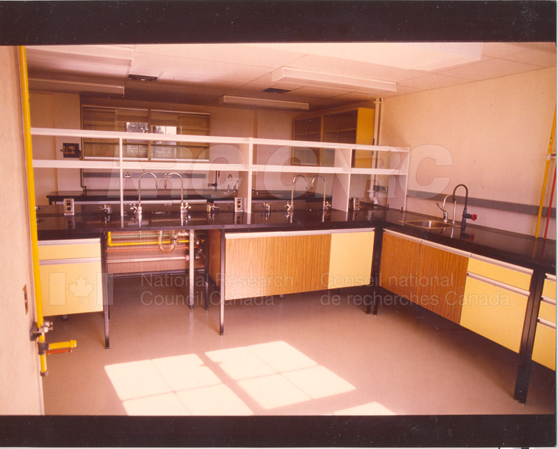 Sussex Lab Renovations c.1954 006
